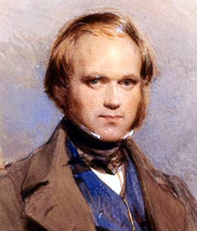 Image result for charles darwin naturalist